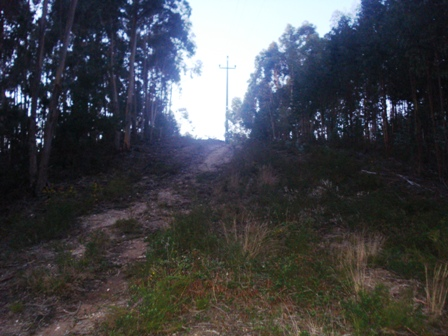 Land_for_sale_in_Lourinha_HPO5354