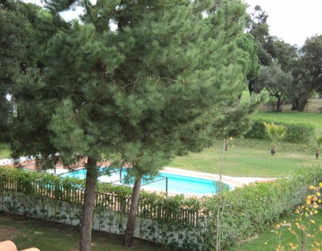 Bed & Breakfast_for_sale_in_Alcacer do Sal_SMA5811