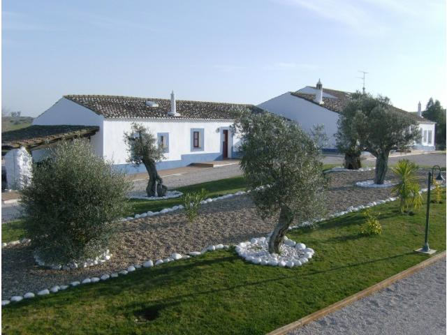 Equestrian Property_for_sale_in_Aljustrel_SMA5829