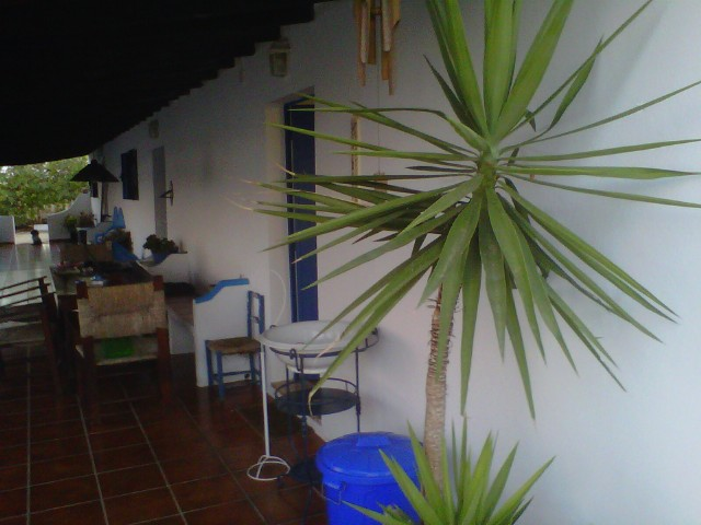 Country House_for_sale_in_Santiago do Cacem_SMA5854