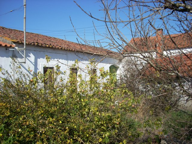 Restoration Project_for_sale_in_obidos_CSO6319