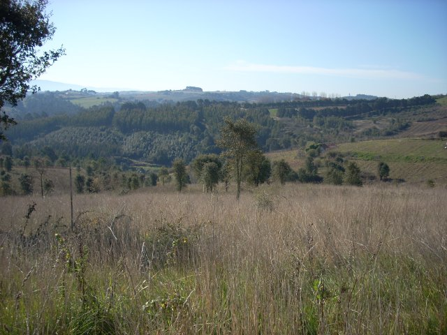 Land_for_sale_in_Obidos _CSO6320